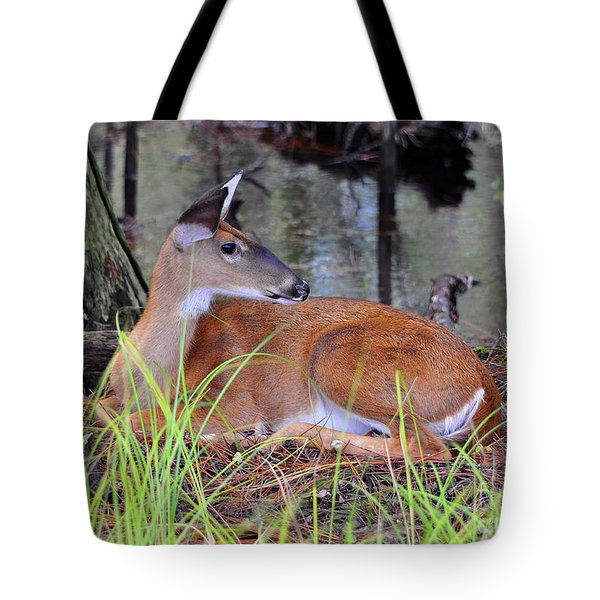 Tote Bag featuring the photograph Drowsy Deer by Al Powell Photography USA