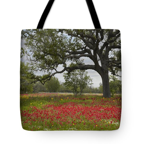 Tote Bag featuring the photograph Drummonds Phlox Meadow Near Leming Texas by Tim Fitzharris