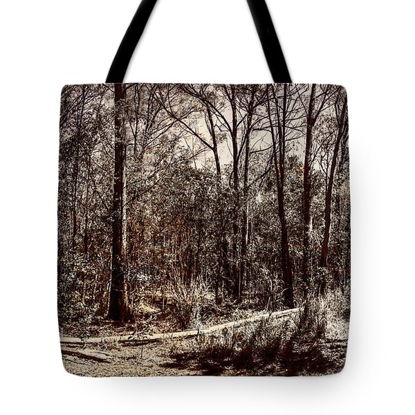 Tote Bag featuring the photograph Dry Autumn Landscape Of A Vintage Woodland by Jorgo Photography - Wall Art Gallery