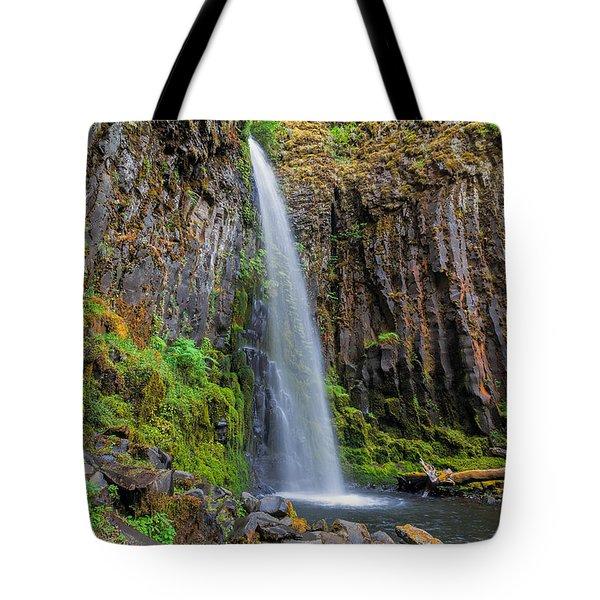 Dry Creek Falls Tote Bag by David Gn