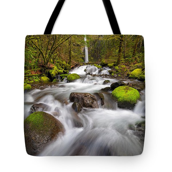 Dry Creek Falls In Spring Tote Bag by David Gn