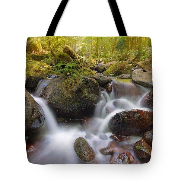 Dry Creek II Tote Bag by David Gn