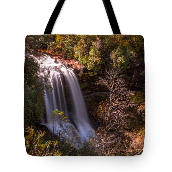 Tote Bag featuring the photograph Dry Falls 2015 by Lynne Jenkins
