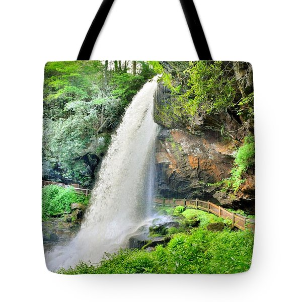 Tote Bag featuring the photograph Dry Falls Highlands North Carolina 2 by Lisa Wooten