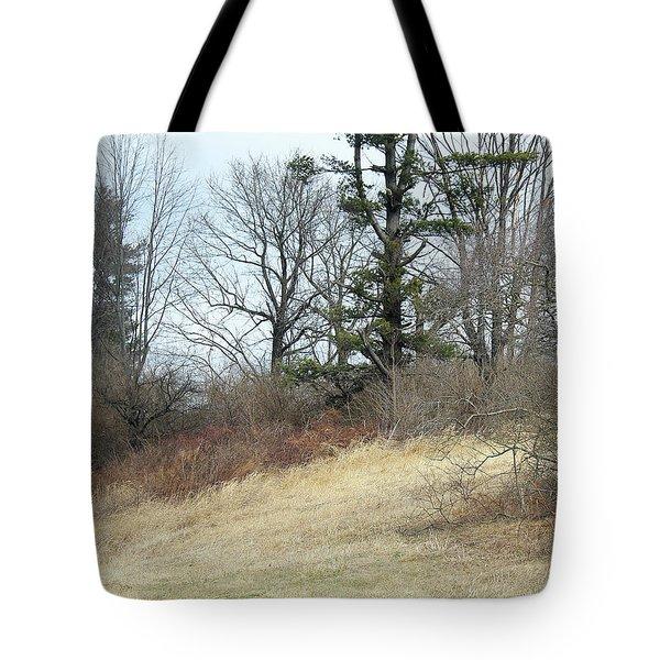 Dry Field Tote Bag