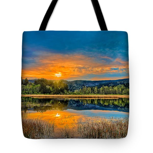 Dry Lagoon Spring Morning Tote Bag