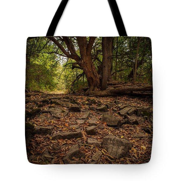 Dry Wash And Osage Orange Tote Bag