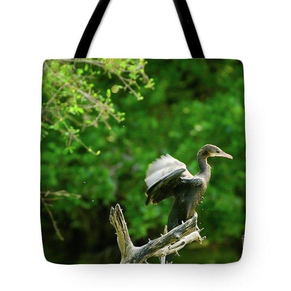 Drying Indian Cormorant Tote Bag