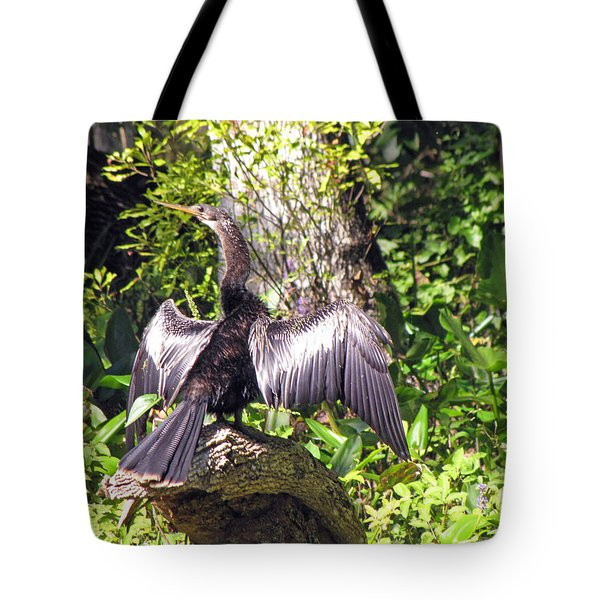 Drying Out Tote Bag by Martha Ayotte