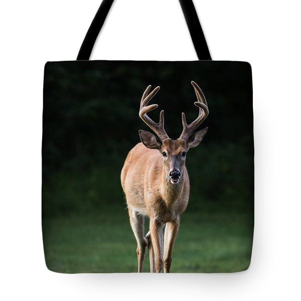 Tote Bag featuring the photograph Dsc_0076 by Andrea Silies