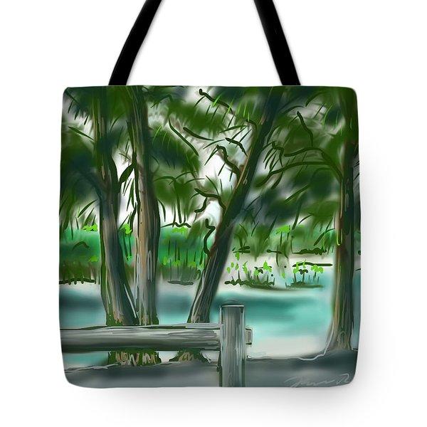 Dubois Park Lagoon Tote Bag
