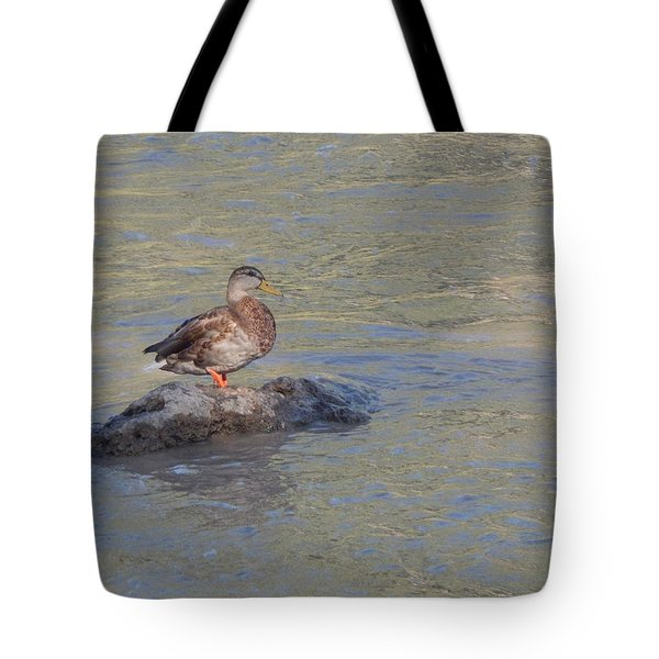 Duck Alone On The Rock Tote Bag