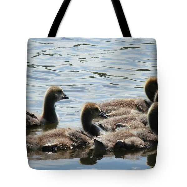 Duck Babies On The Water Tote Bag