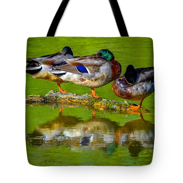 Duck Dreams Tote Bag