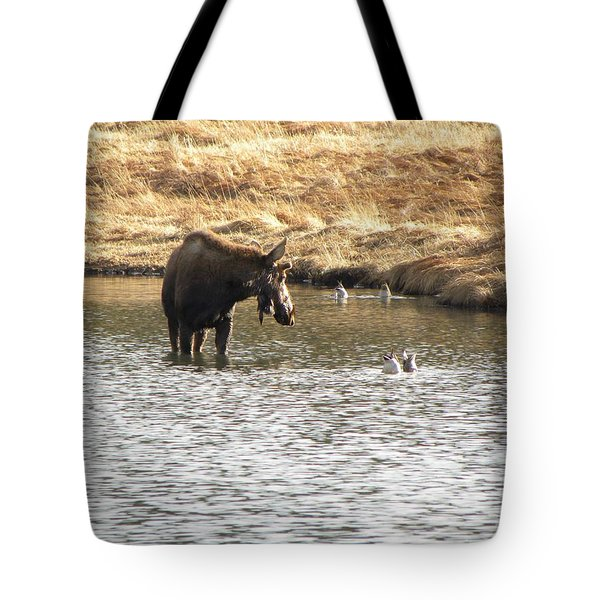 Tote Bag featuring the photograph Ducks - Moose Rollinsville Co by Margarethe Binkley