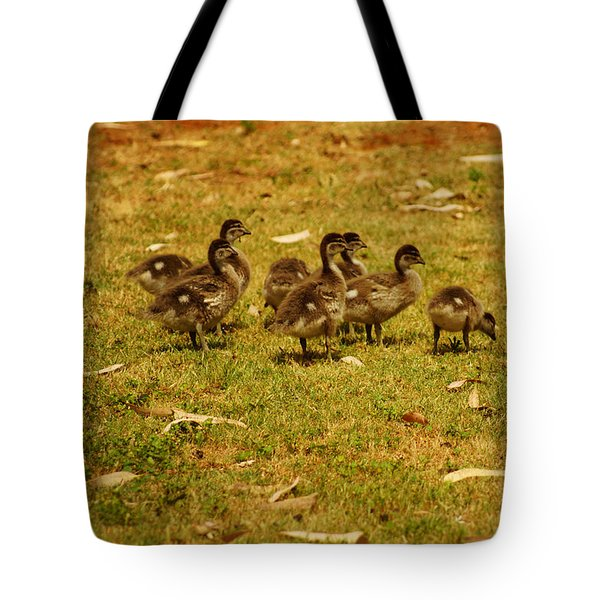 Duck Family I Tote Bag
