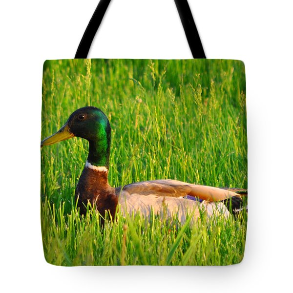 Duck In The Grass Tote Bag