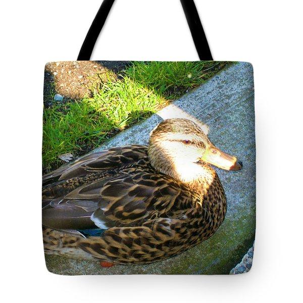 Duck Melanie Tweed In  The Sun Tote Bag