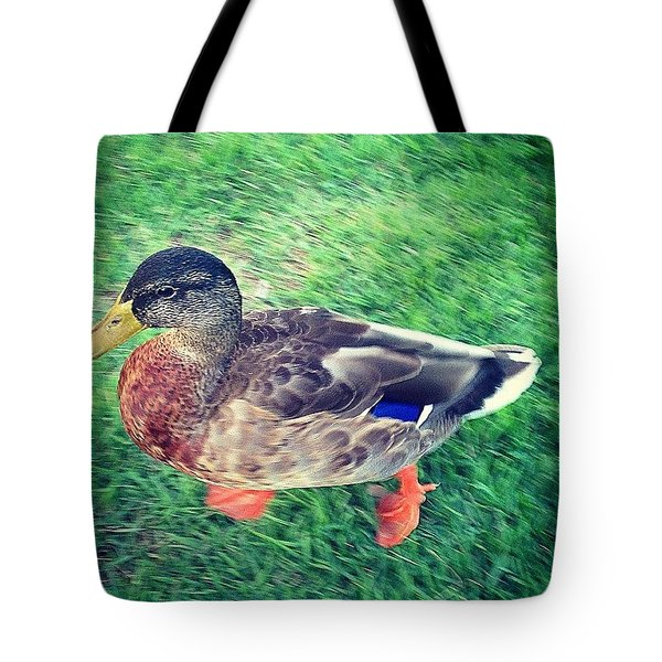 Duck In A Rush Tote Bag