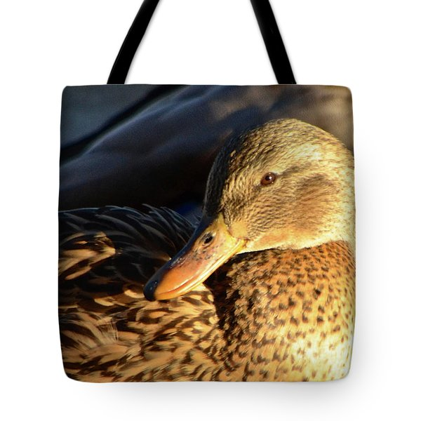 Duck Sunbathing Tote Bag