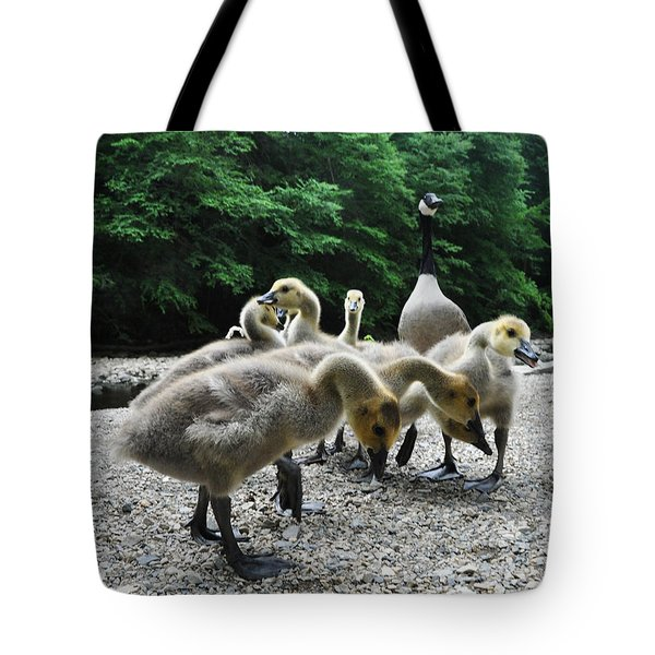 Ducklings Tote Bag by Bill Cannon