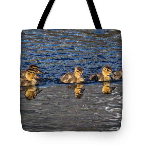 Tote Bag featuring the photograph Ducklings  by Mitch Shindelbower