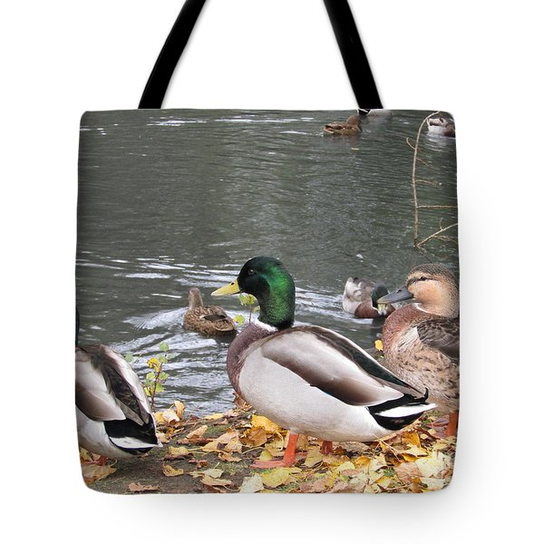 Ducks By The Pond Tote Bag
