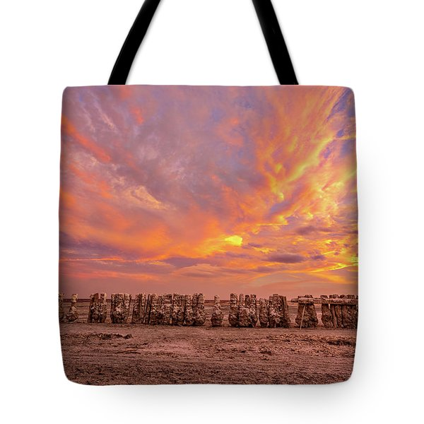 Tote Bag featuring the photograph Ducks In A  Row by Peter Tellone