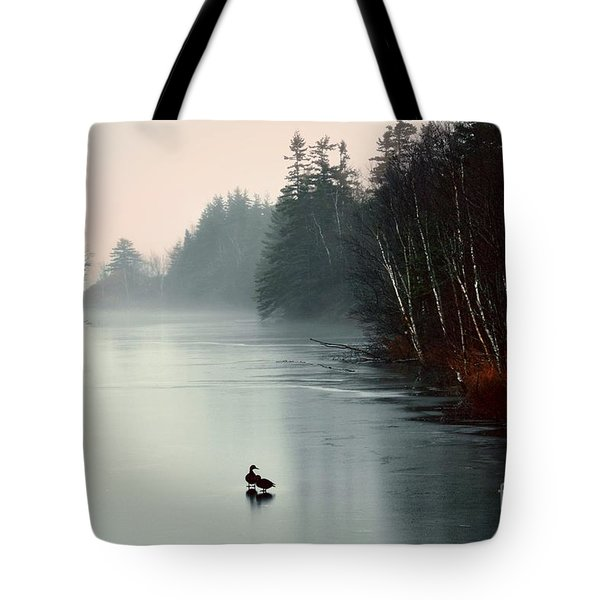 Ducks On A Frozen Pond Tote Bag by Elaine Manley
