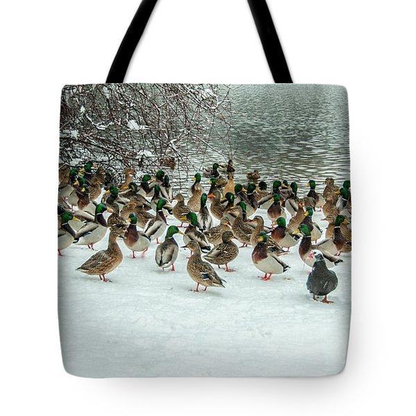 Ducks Pond In Winter Tote Bag