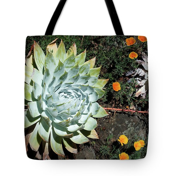 Tote Bag featuring the photograph Dudleya And California Puppy by Catherine Lau