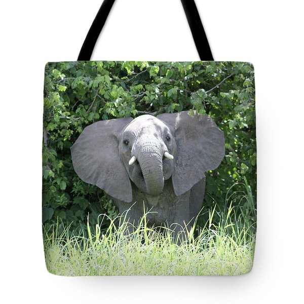 Dumbo Charges Tote Bag