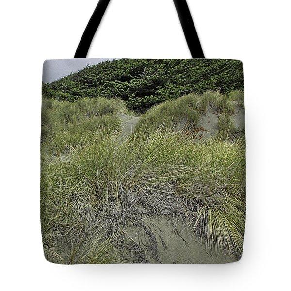 Bodega Dunes #3 Tote Bag