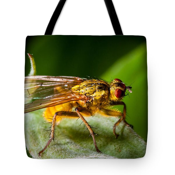 Dung Fly On Leaf Tote Bag