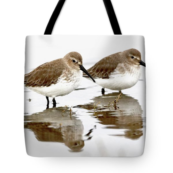Dunlin Seeing Double Tote Bag