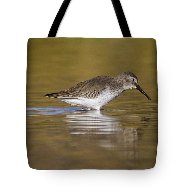 Dunlin In The Pond Tote Bag