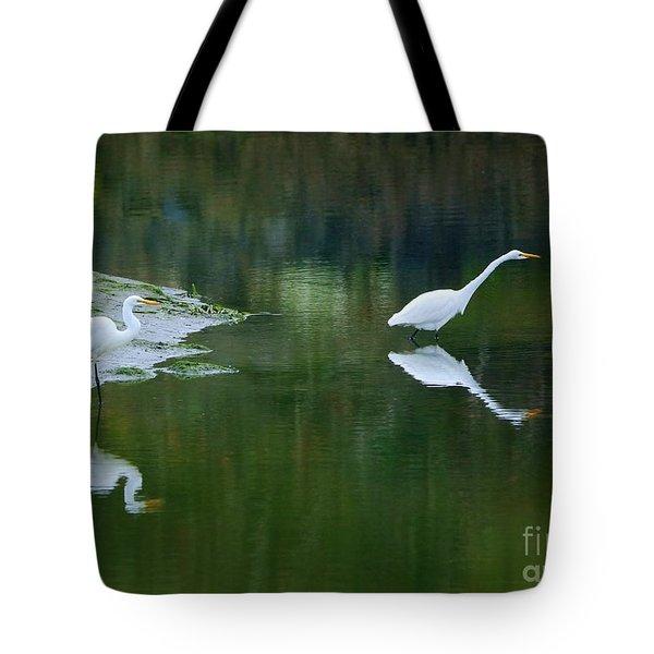 duo Tote Bag by Sheila Ping