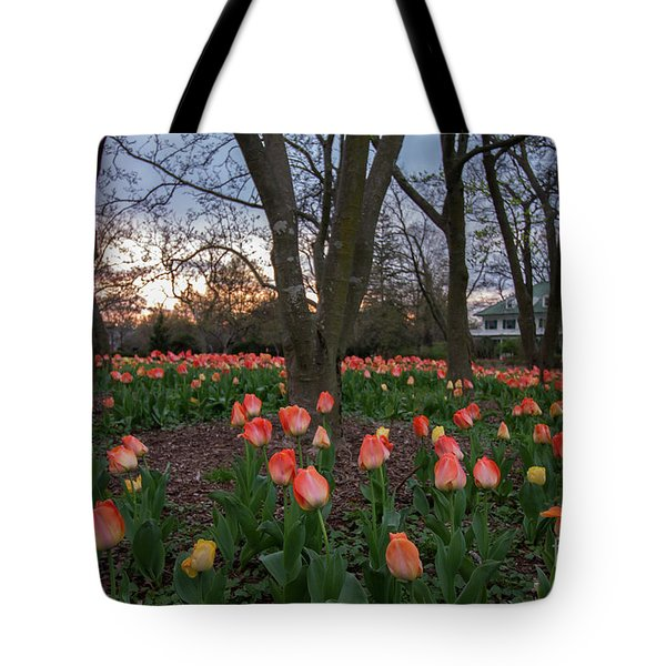 Tote Bag featuring the photograph Dusk At Sherwood Gardens by Chris Scroggins