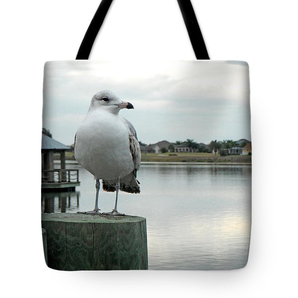 Dusk At The Pier Tote Bag by Martha Ayotte