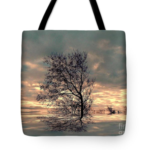 Tote Bag featuring the photograph Dusk by Elfriede Fulda