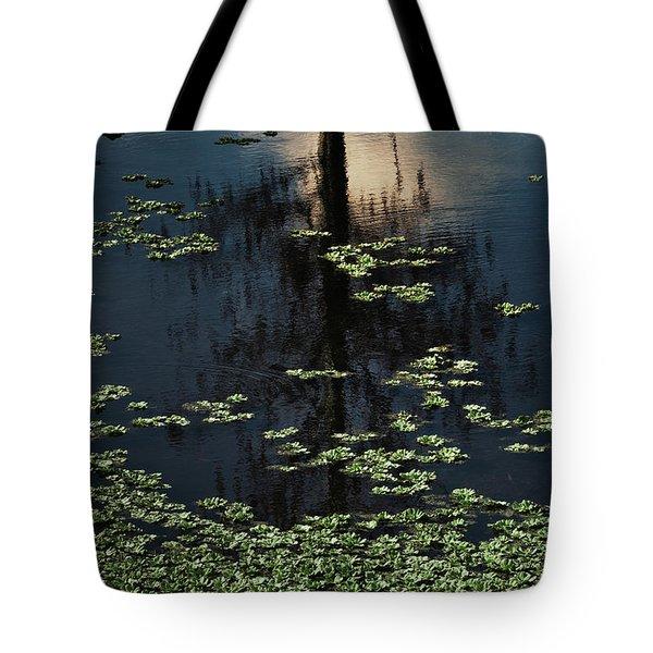 Dusk In The Swamp Tote Bag