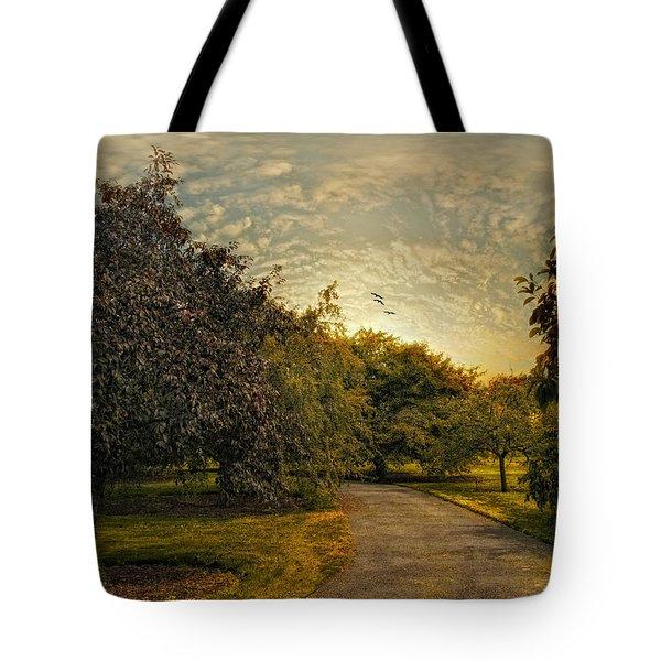 Dusk Tote Bag by Jessica Jenney