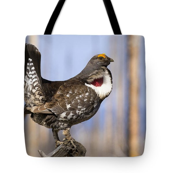 Tote Bag featuring the photograph Dusky by Aaron Whittemore