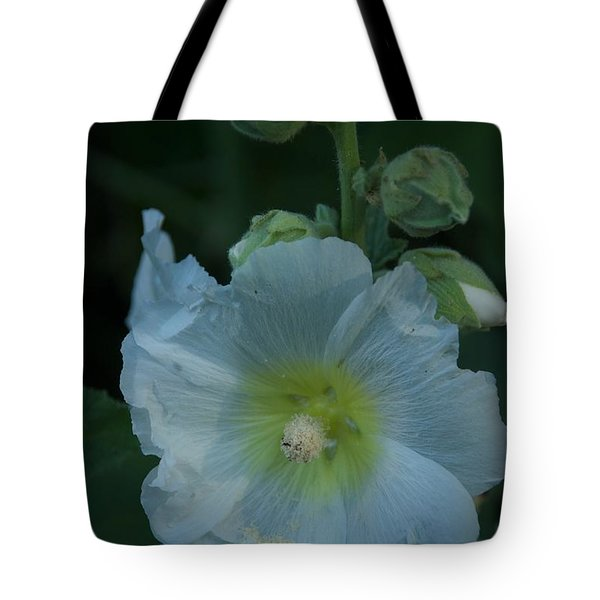 Dust Tote Bag by Joseph Yarbrough