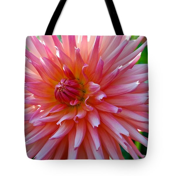 Dusty Rose Dahlia  Tote Bag