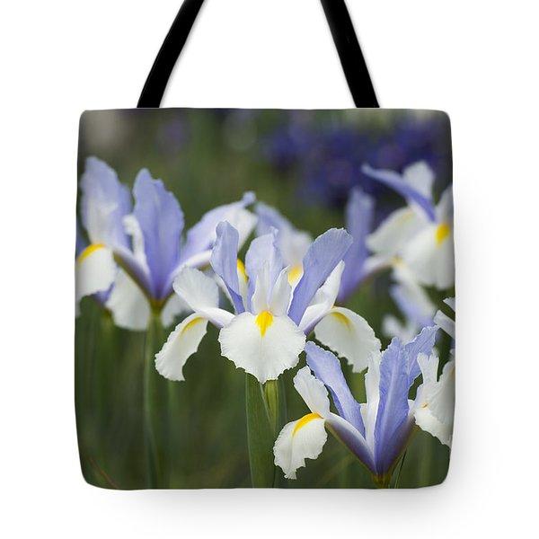 Dutch Iris Silver Beauty Tote Bag
