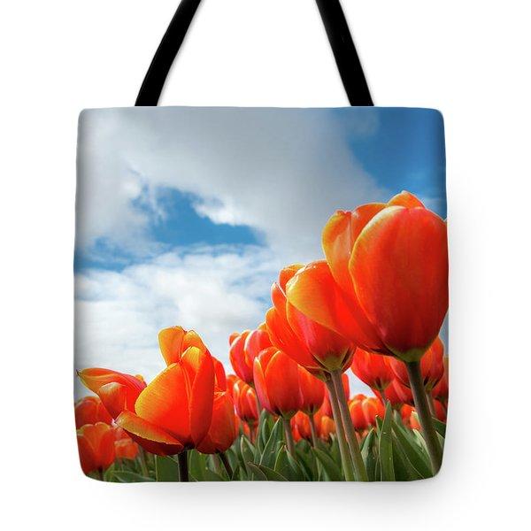Dutch Tulips Near Keukenhof Tote Bag