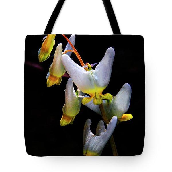 Dutchmans Breeches Tote Bag