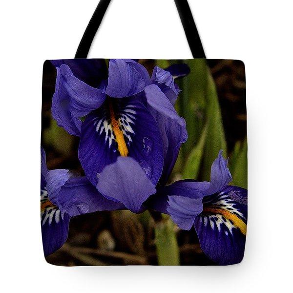 Dwarf Iris 2016 Tote Bag by Richard Cummings