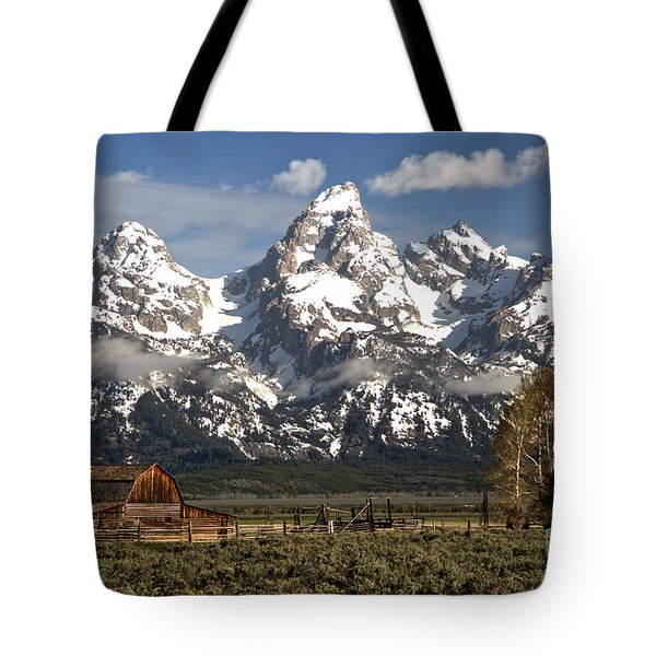 Dwarfed By The Teton Mountain Ange Tote Bag by Adam Jewell